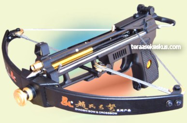 Compound crossbow pistol images for Mini crossbow fishing